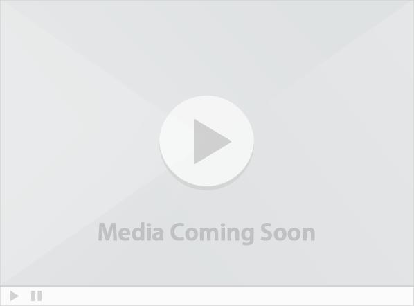 Spotlight media placeholder